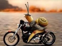 motoros születésnapi köszöntő Csigalom… nyugavér… motoros születésnapi köszöntő